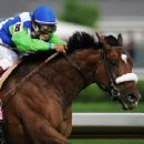 Derby Winner - Barbaro