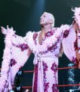 Nature Boy - Ric Flair