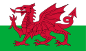Flag of the - Welsh Nation